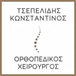 ΤΣΕΠΕΛΙΔΗΣ ΚΩΝΣΤΑΝΤΙΝΟΣ